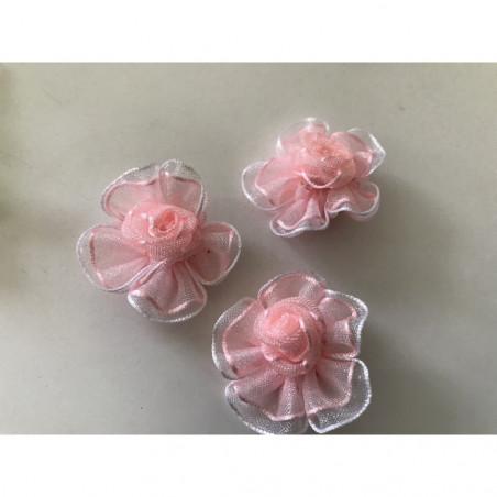 Fleur organisa rose
