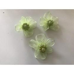 Fleur organisa vert