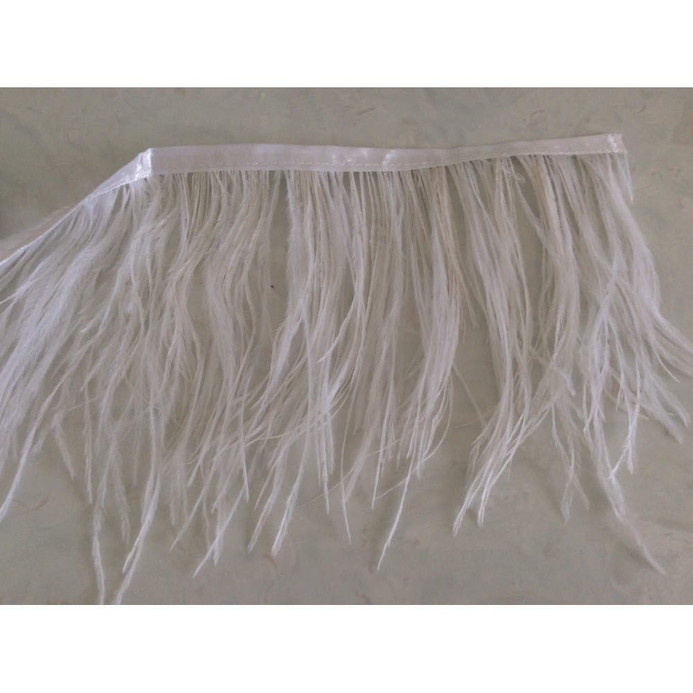 Ruban plume de faiesan